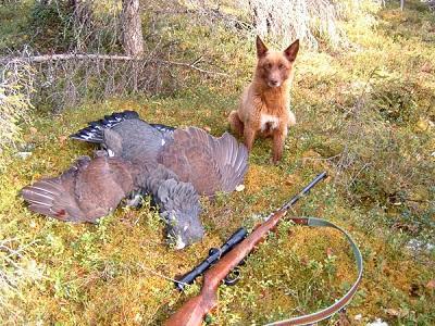 Великолепный охотник