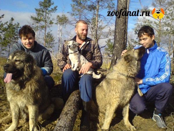Чемпионы России Арина и Ричард с маленькой Кнопкой
