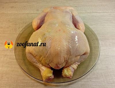 Свежая курица