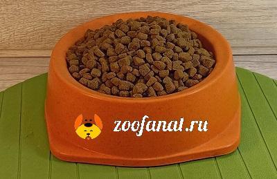 Сухие корма - современный и полноценный вид питания собаки