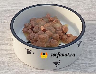 Керамическая миска с консервами
