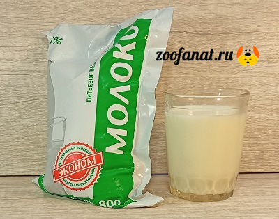 Щенки любят молоко