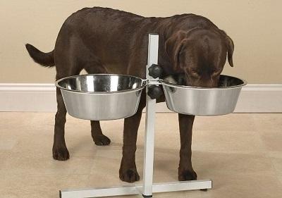 Подставка для крупных собак
