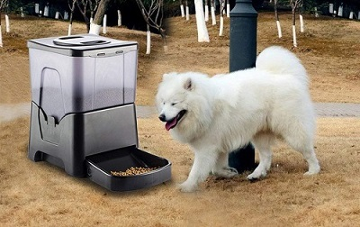 Автокормушка для крупных собак