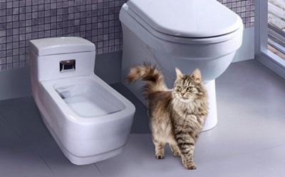 Туалет автоматический Kopfgescheit