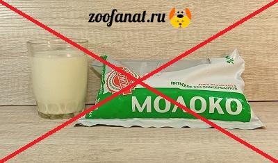 Коровье молоко запрещено!